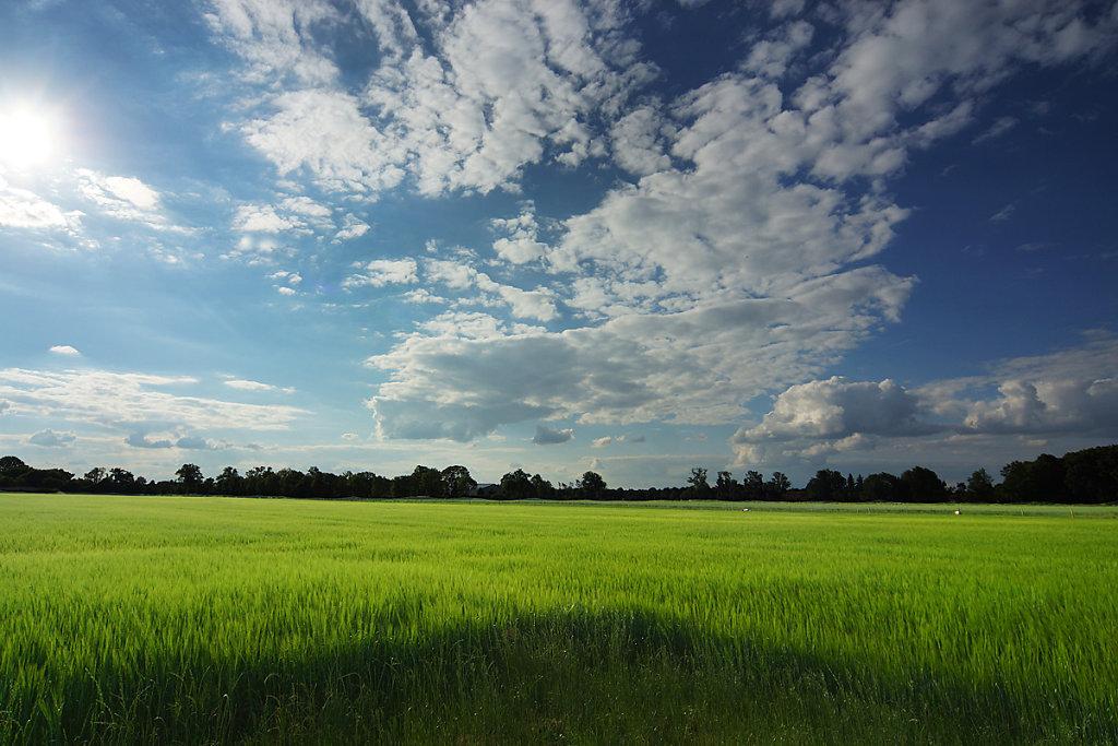 Landschaften 5