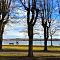 Starnberger See Januar